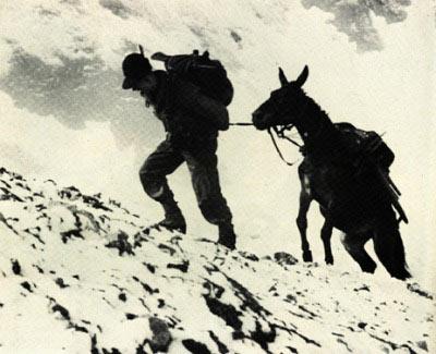 La storia degli alpini for Cabine vicino montagna di sangue